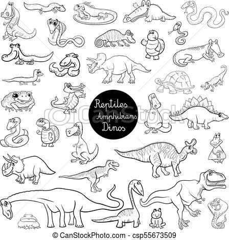 reptiles and amphibians set color book.