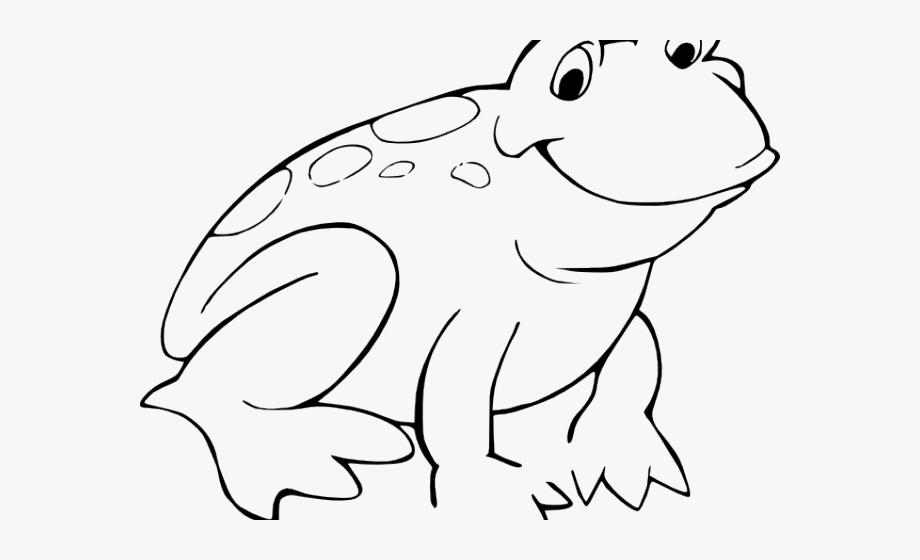Amphibian Clipart Outline.