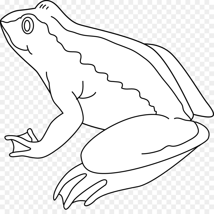 Frog Amphibian Black and white Drawing Clip art.