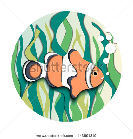 Amphiprion Stock Photos, Royalty.