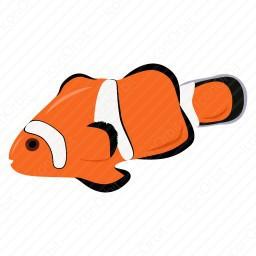 Amphiprion Percula Fish icon.