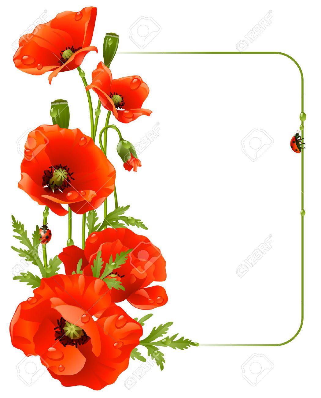 red poppy flower clipart.