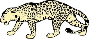 Amur Leopard Clip Art Download 51 clip arts (Page 1).
