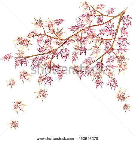 Acer Tree Stock Vectors, Images & Vector Art.