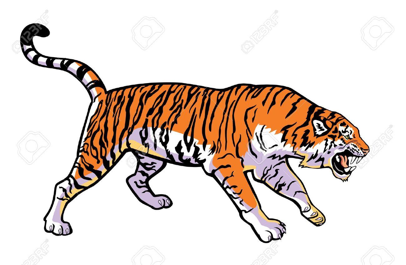 Siberian tiger clipart #13