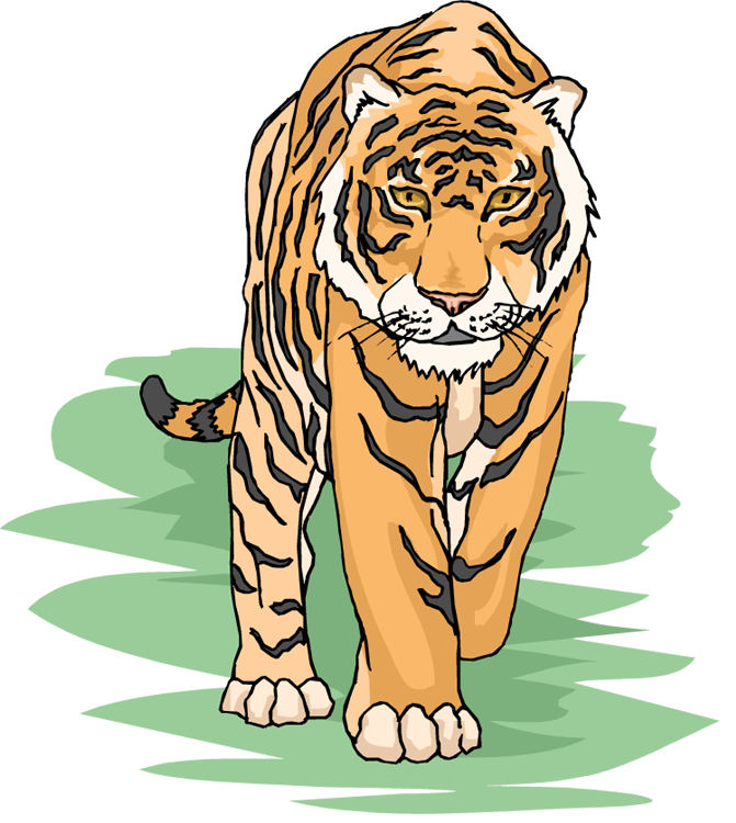Siberian tiger clipart.