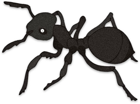 Free Ant Clipart.