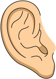 Free Ear Cliparts, Download Free Clip Art, Free Clip Art on.