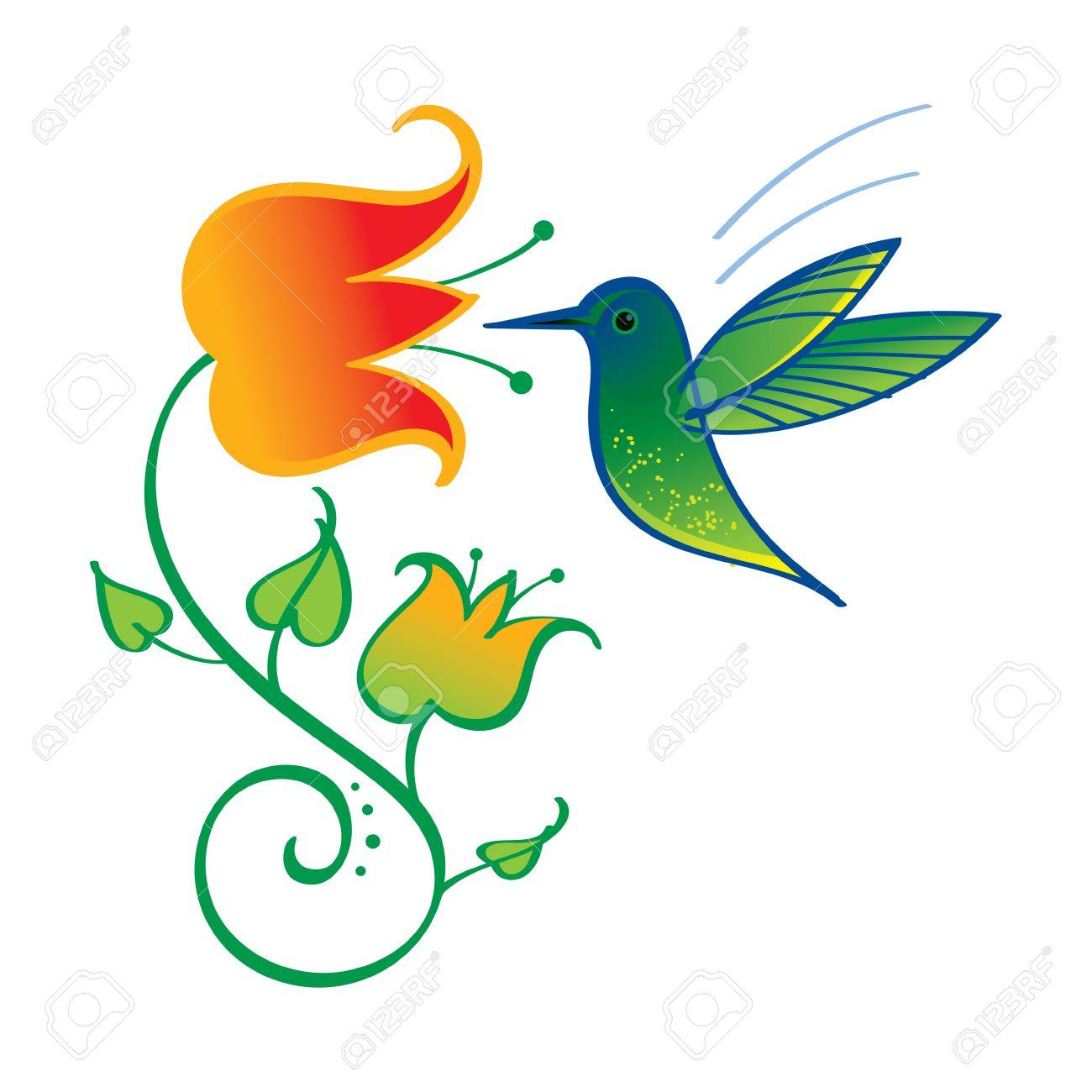Colibri Little Exotic Bird Nature Flower Nectar Royalty Free.