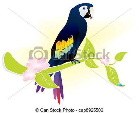 Clip Art Vector of parrot ara.