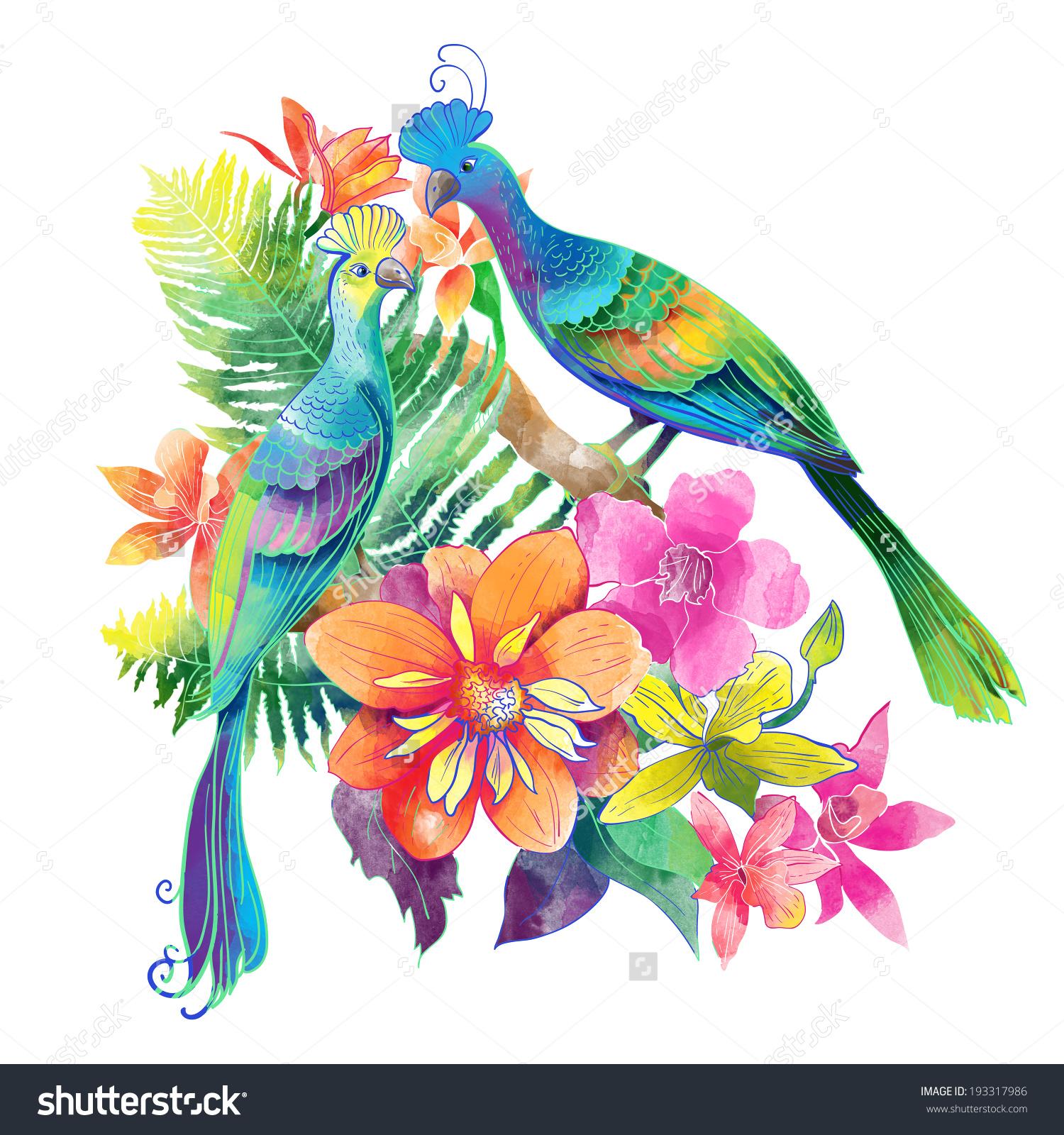 Watercolor Exotic Birds Stock Illustration 193317986.