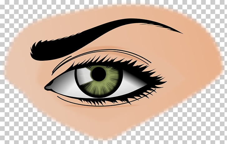 Eyebrow Beauty , Woman Eyes Transparent Background PNG.