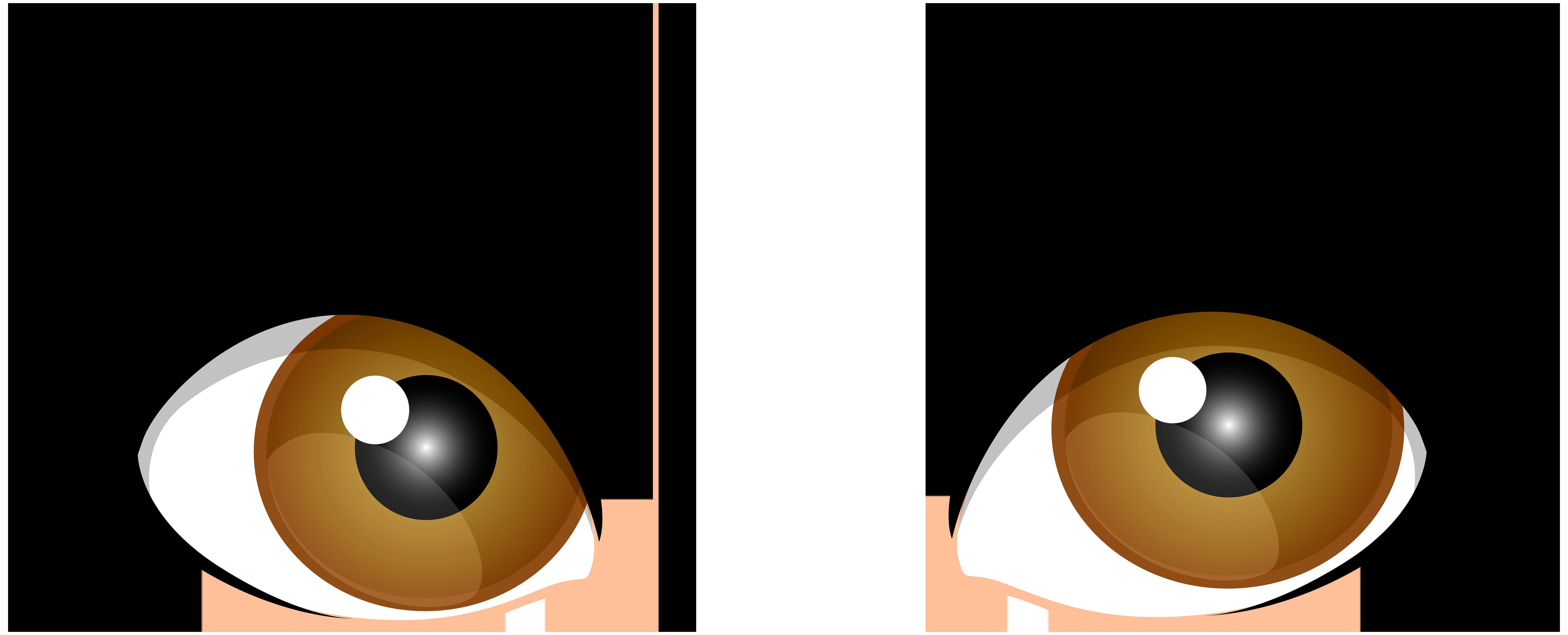 Human eye Brown Clip art.