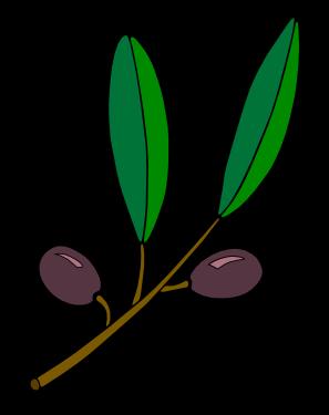 olive branch images clip art.