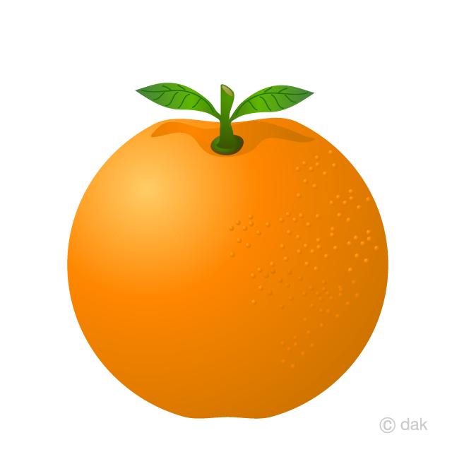 Free Orange Clipart Image Illustoon.