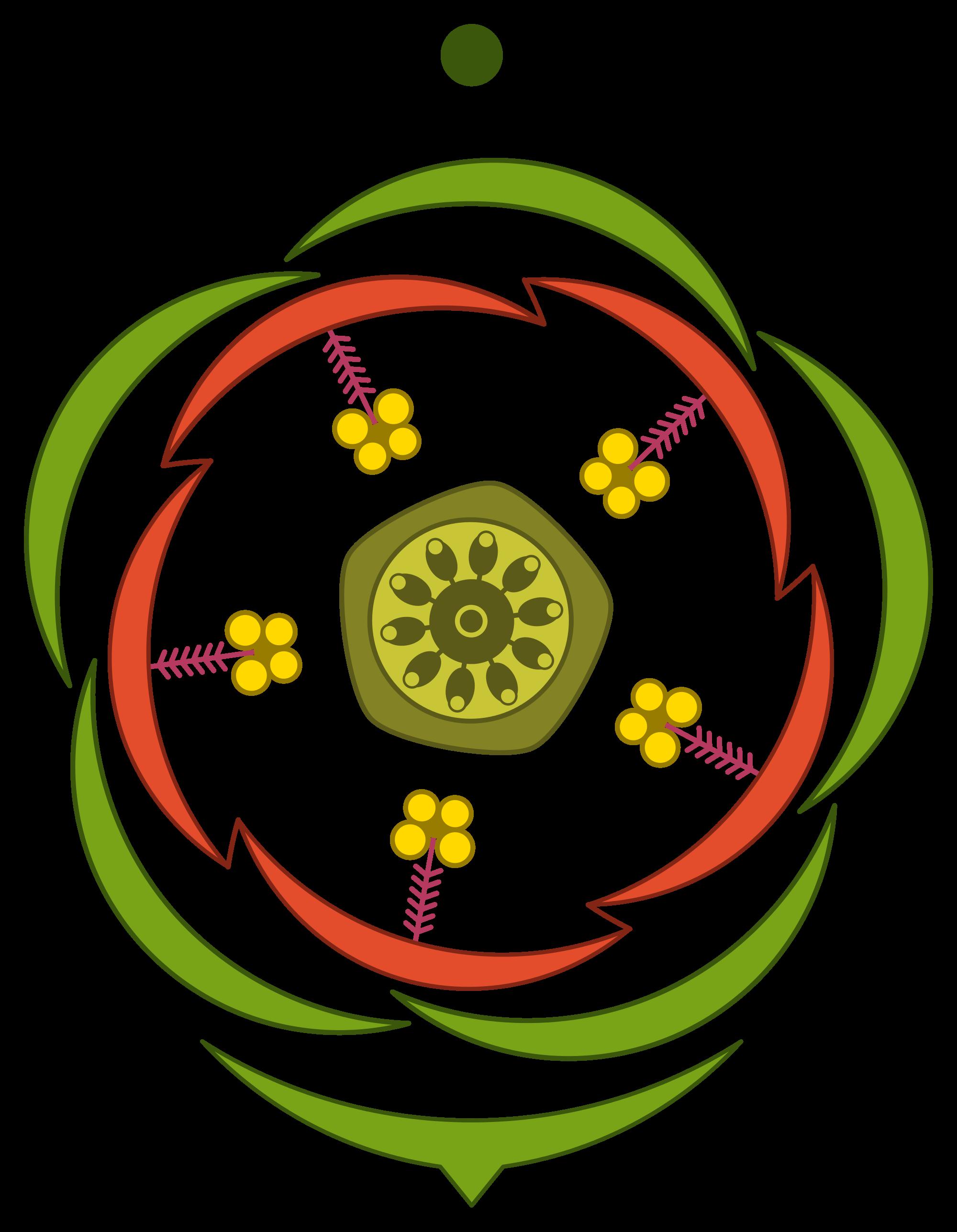File:Floral diagram.