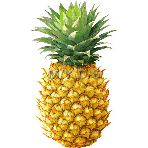 Clipart ananas 2 » Clipart Station.
