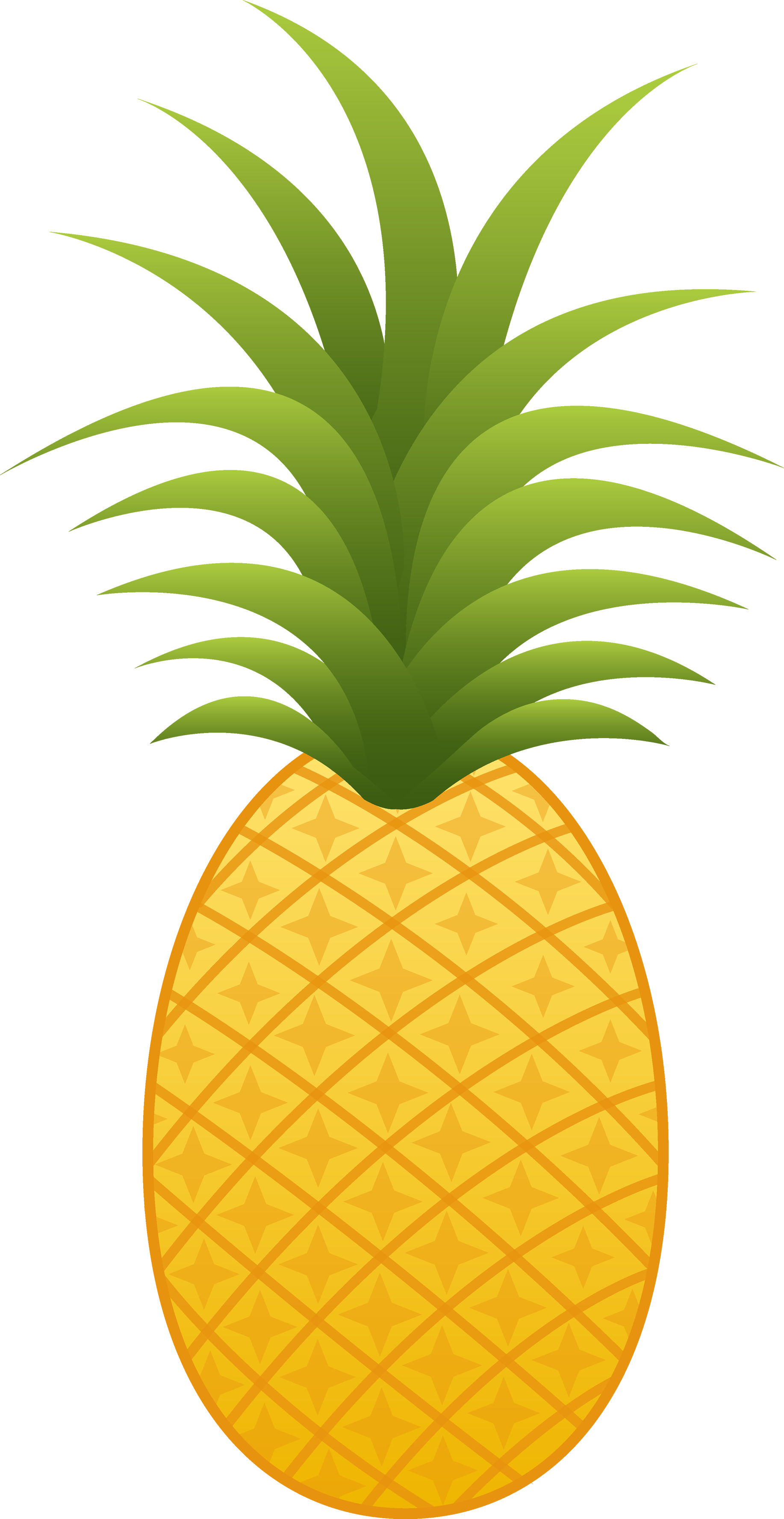 Pineapple images free pictures download 3.
