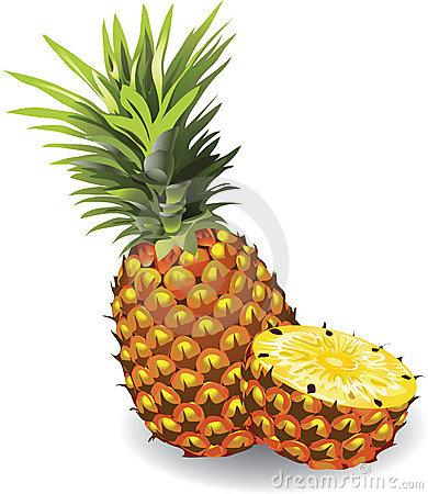 Pineapple Stock Illustrations.