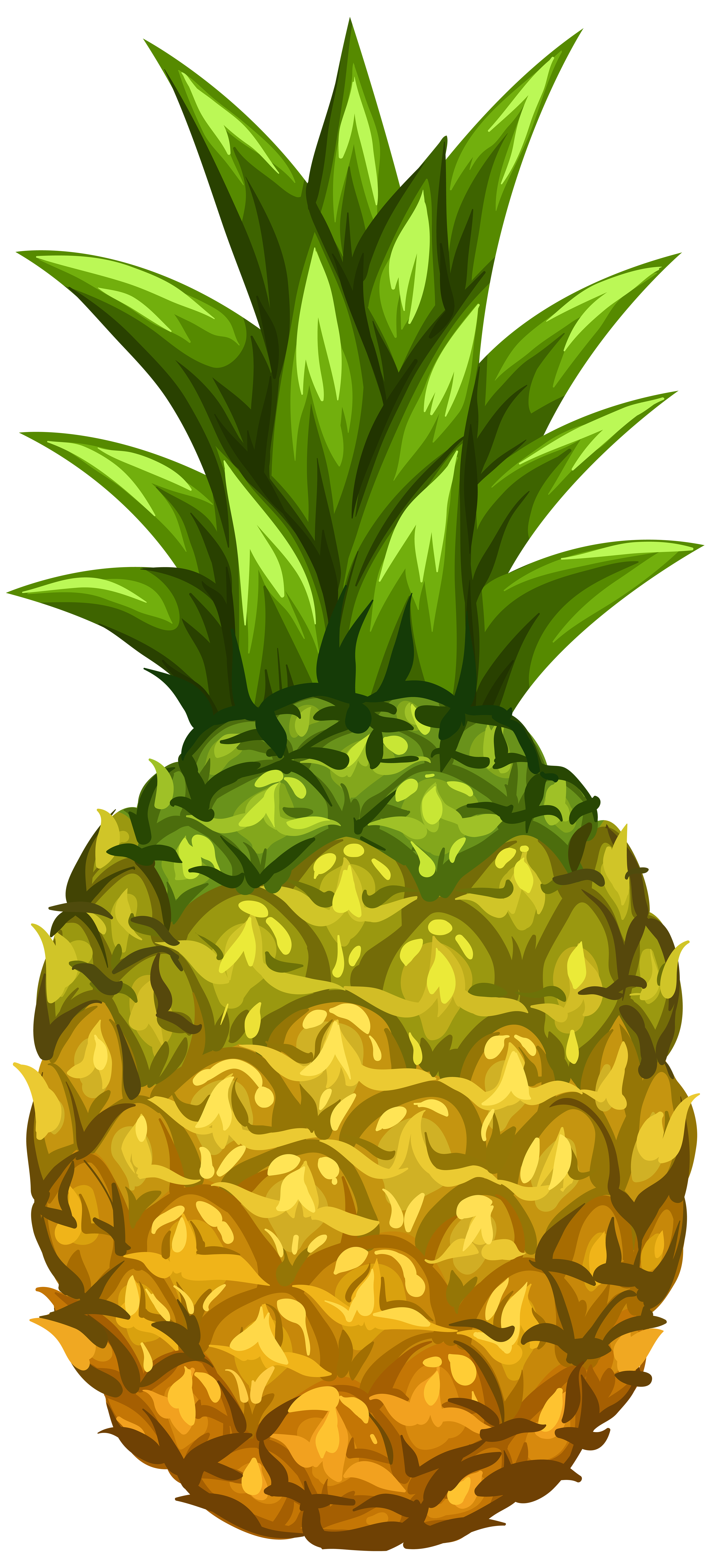 Pineapple PNG Clip Art Image.