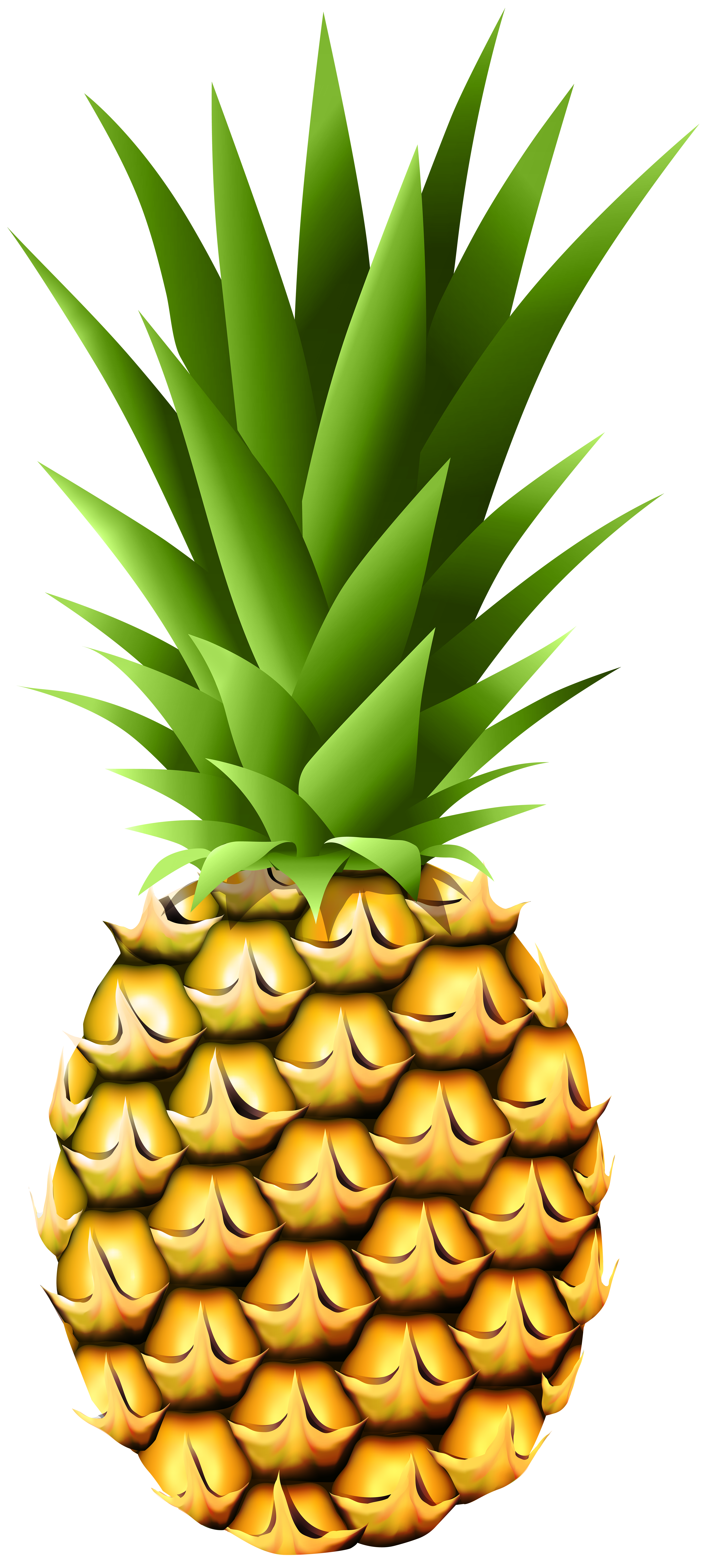Pineapple Transparent PNG Clip Art Image.