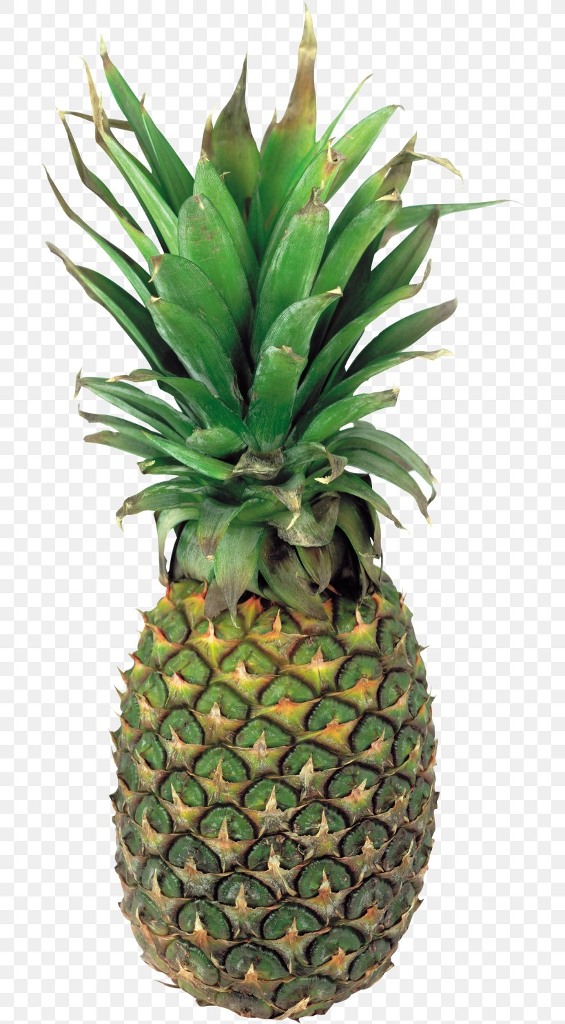 Pineapple Clip Art Juice Fruit, PNG, 700x1485px, Pineapple.