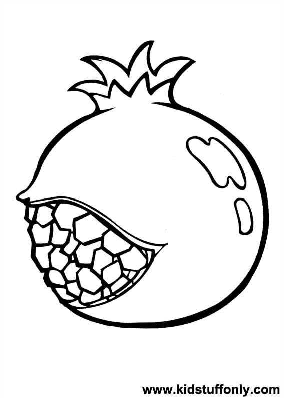 Pomegranate Clipart.