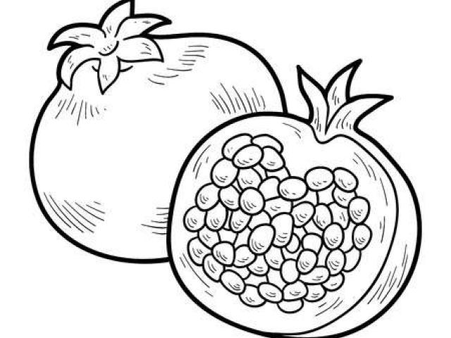 Free Pomegranate Clipart, Download Free Clip Art on Owips.com.