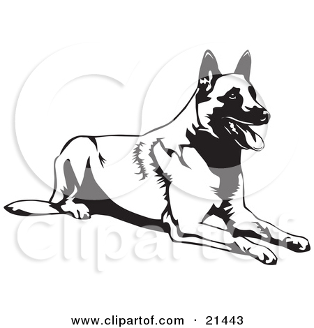 Royalty Free Stock Illustrations of Dogs by David Rey Page 2.