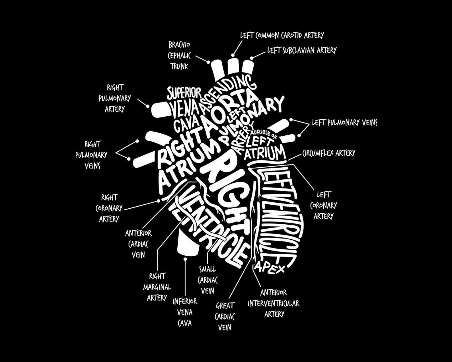 Anatomical Heart Shirt Cardiac Nurse T.