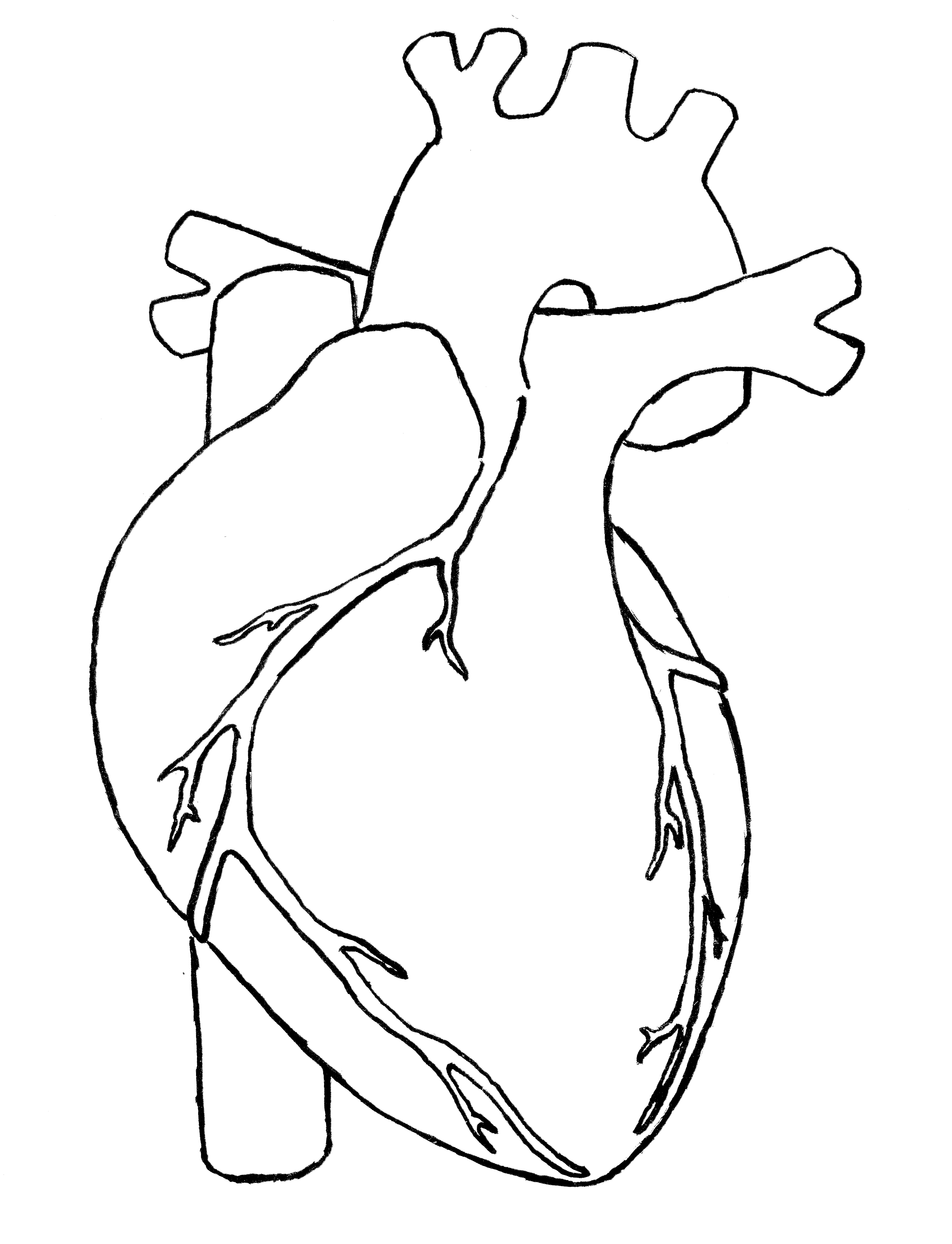 Free Human Heart Clipart Black And White, Download Free Clip.