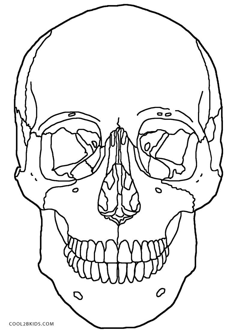 Printable Skulls Coloring Pages For Kids.