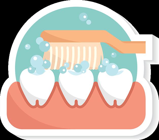 Teeth Clip Perfect.