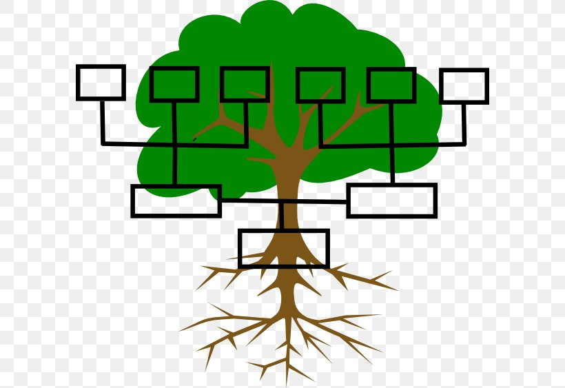 Family Tree Genealogy Ancestor Clip Art, PNG, 600x563px.