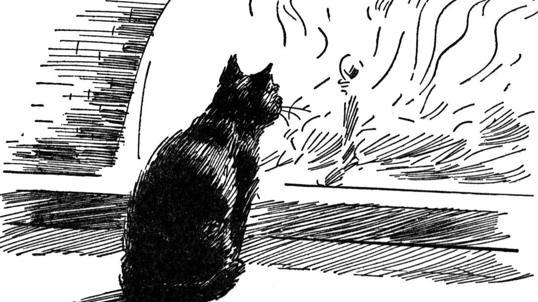 The Black Cat\'—Plot, Symbols, Themes, and Key Quotes.