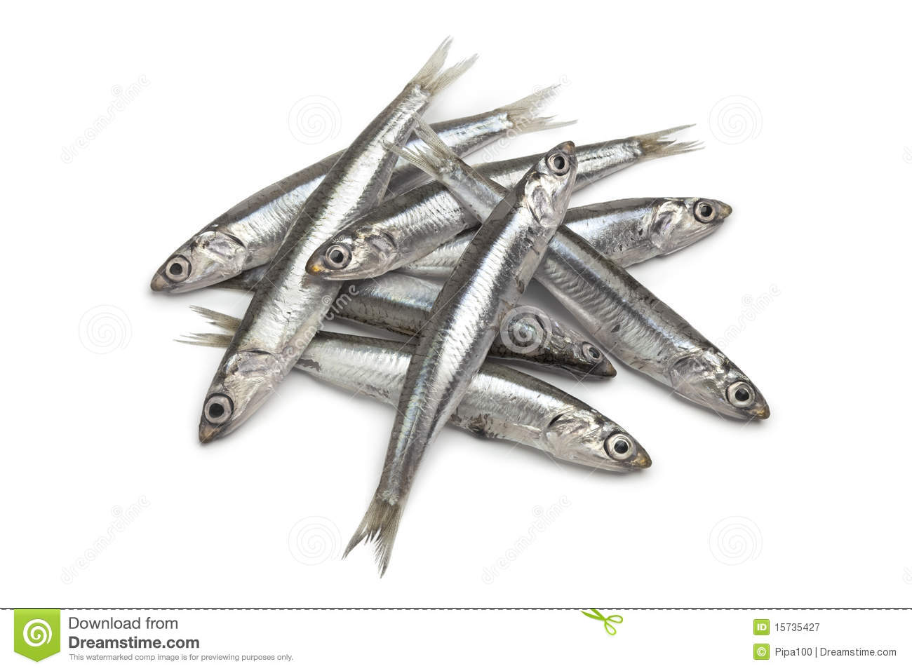 Anchovy Clipart.