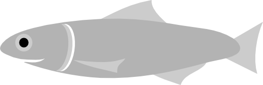 Anchovy Fish Clipart.