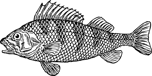 Scaly Fish clip art.