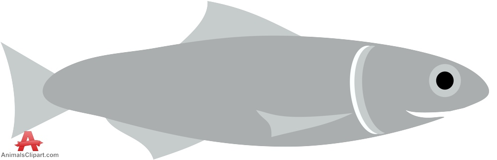 Gray Anchovy Fish Clipart.