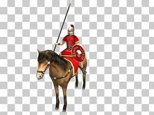 Roman Cavalry PNG Images, Roman Cavalry Clipart Free Download.