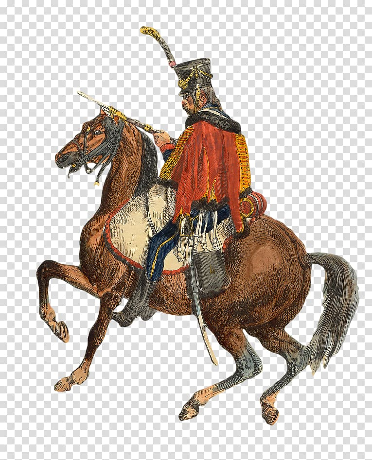 France Polish hussars Cavalry Regiment Hundred Days, france.