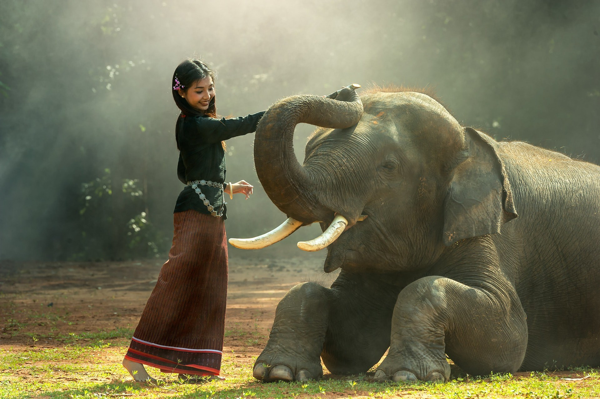 How Ancient Thailand Used Elephants as Instruments of War.
