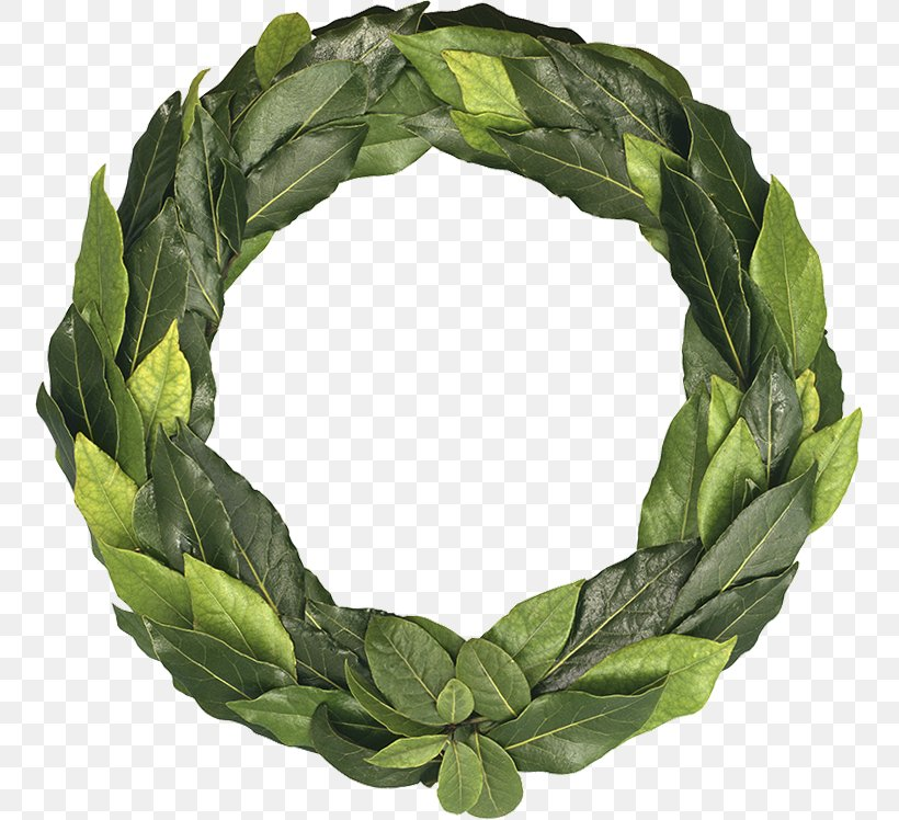 Ancient Greece Laurel Wreath Leaf Olive Wreath, PNG.