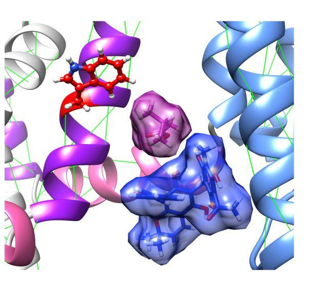 UCI researchers discover molecular mechanisms of ancient.