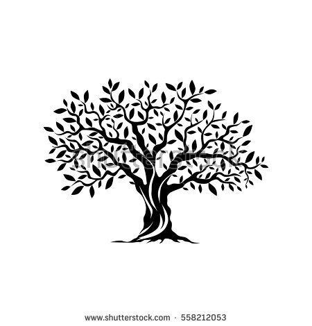 Olive Tree Clipart Black And White.