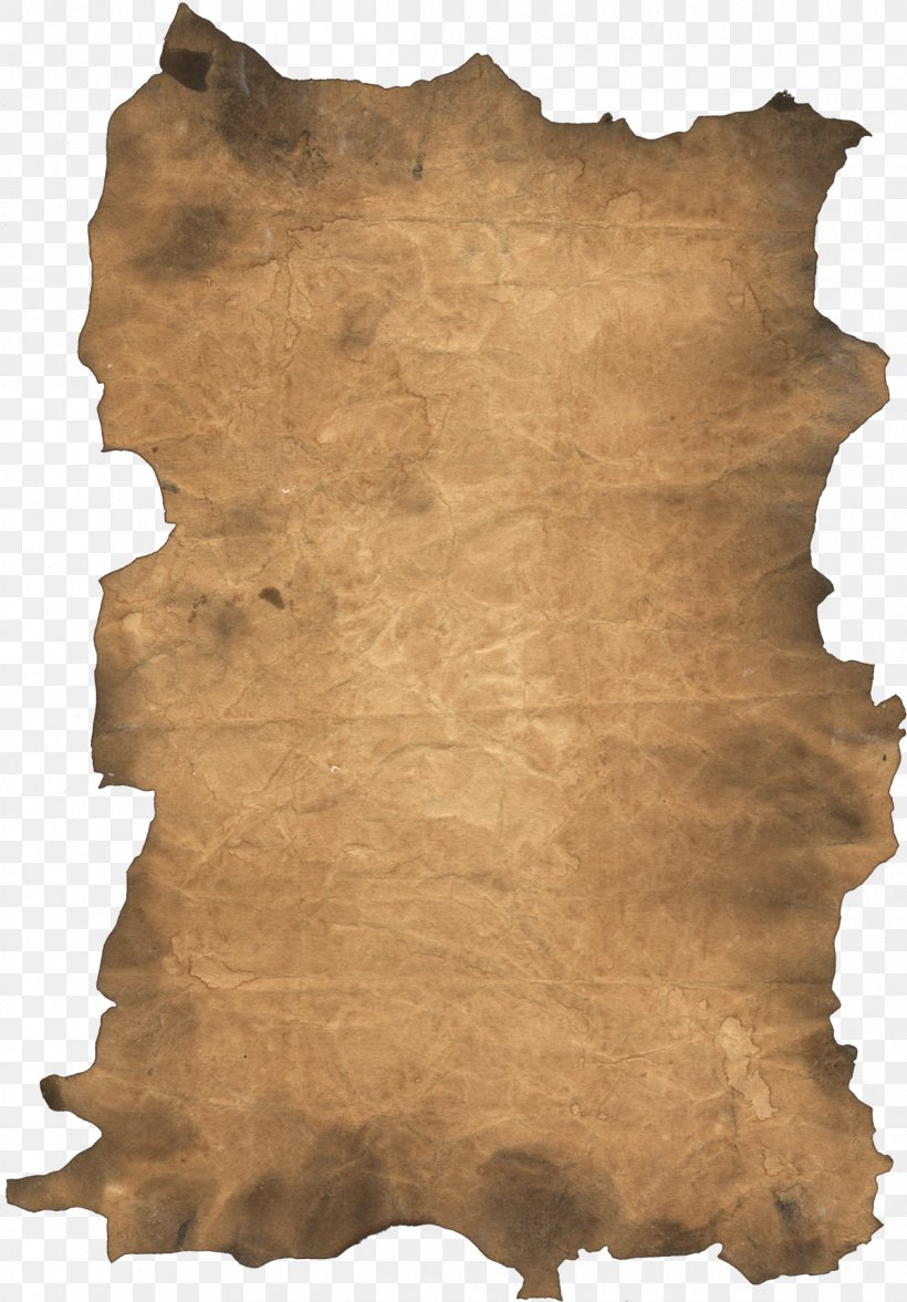 Paper Scroll Card Stock Clip Art, PNG, 1200x1723px, Paper.