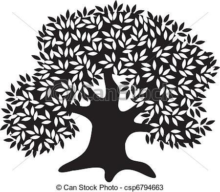 Vectors of Silhouette of the old olive tree csp6794663.