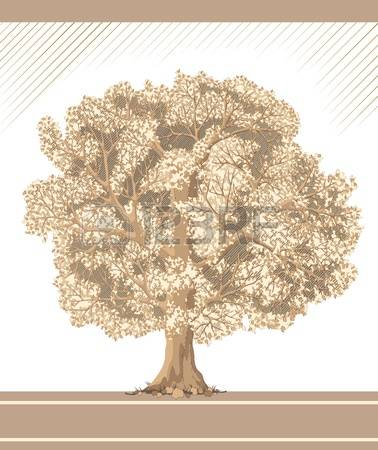 7,542 Ancient Tree Stock Vector Illustration And Royalty Free.