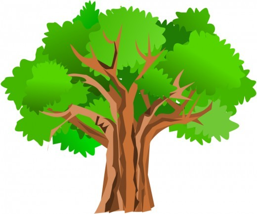 Old Tree Clip Art.