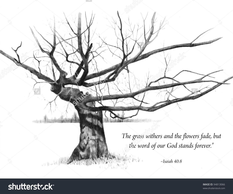 Bible fruitful tree clipart.